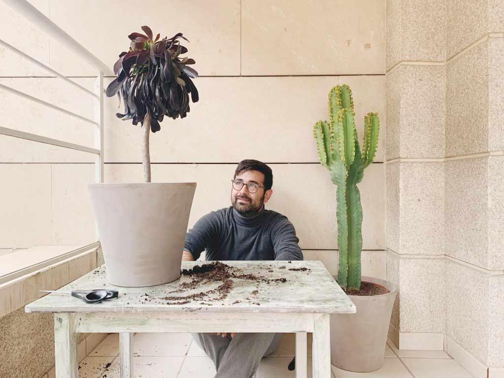 plantas de vivero online